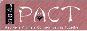 DogPact - People & Animals Communication Together